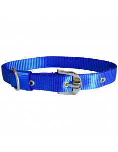 Pawzone Smooth & Sturdy  Blue  Collar
