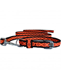 Pawzone Reliable & Robust Orange Collar with Leash set for Pets