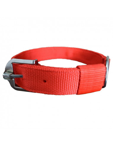 Pawzone  Classic Collar for Dogs Large 2 inch