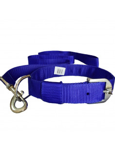 Pawzone  Blue Leash with Collar Set for Dogs