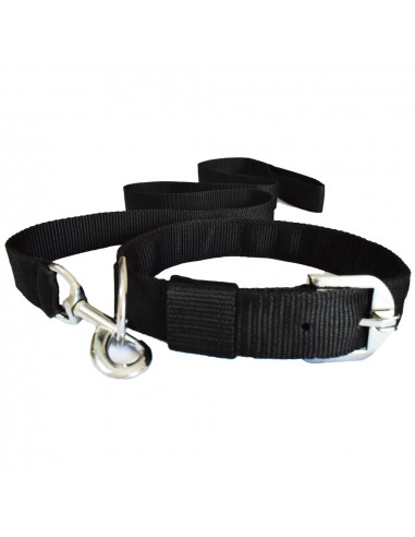 Pawzone  Black Leash with Collar Set for Dogs