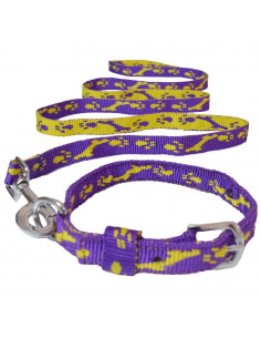 Pawzone Reliable & Robust Yellow Collar with Leash set for Pets