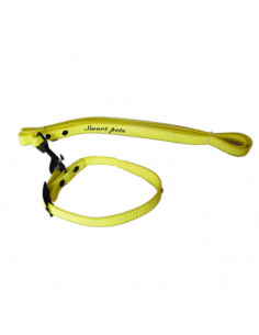 Pawzone Yellow Water Proof Collar With Leash