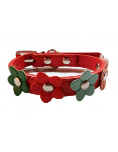 Pawzone Flowers, Puppy and Cat Collars