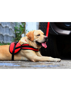Pawzone ultra strong super comfort dog harness