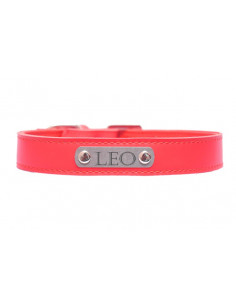 Pawzone Red Sliver Name Plate Collar