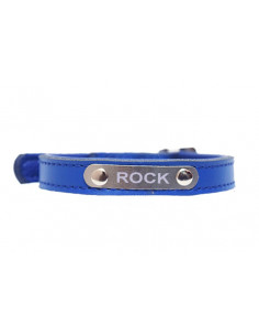 Pawzone Dark Blue Sliver Name Plate Collar