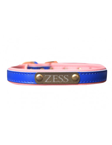 Pawzone Dark Blue Gold Name Plate Collar