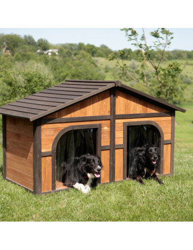 Wodden Dog House