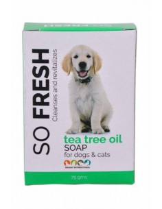 So Fresh Tea Tree Oil Soap 75gm (Pack of 2)