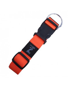 Pet Walk Classic Collar Large ( Colour May Vary )